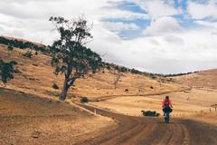 Bikepacking Tassie Trail  004.jpg (Voisinages) Tags: camping sport cycling outdoor au australia adventure mtb tasmania aus australie voyages concepts oceania moutainbiking cyclisme tasmanie océanie bikepacking 15000000 15019000 iptcnewscodes iptcsubjects motsclésgénériques continentsetpays bikepackingcom 15000008