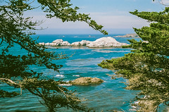 45460011 (danimyths) Tags: ocean california film beach water coast waterfront pacific roadtrip pch pacificocean westcoast californiacoast filmphotography pacificcostalhighway