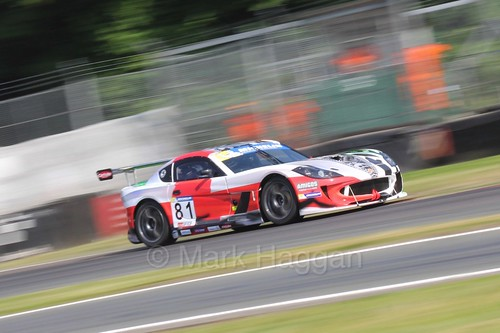Tom Hibbert in the Ginetta GT4 Supercup during the BTCC at Oulton Park, June 2016