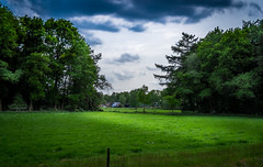 Farm at the Veluwe (dannygeveling1) Tags: green landscape farm veluwe