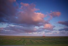SG107989-2 (Sönke Pieper) Tags: deutschland leuchtturm schleswigholstein schaf norddeutschland westerhever nordfriesland eiderstedt salzwiese beisonnenaufgang