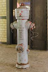 20160604-FD-flickr-0003.jpg (esbol) Tags: hydrant fire firetruck fighters extinguisher feuerwehr firefighters feuerlscher feuerwehrauto feuermelder lschmittel