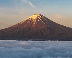 Morning Fuji and sea cloud (shinichiro*@OSAKA) Tags: japan fuji may april crazyshin yamanashi 2016  afsnikkor2470mmf28ged  nikond4s 20160518ds32170