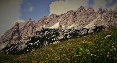 Italien 1980 , Colfosco-Sellagebiet, 75045 (roba66) Tags: travel italien italy mountains nature berg rock landscape reisen montana rocks italia urlaub natur paisaje dia berge explore landschaft sella trentino sdtirol canazei voyages felsen gebirge dolomiten colfosco naturalezza roba66 sellaregion