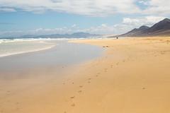 Cofete Beach-0913 (davets26) Tags: jandia fuertaventuramay2016