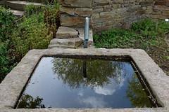 Wasser vom Himmel (Sockenhummel) Tags: reflection water wasser fuji brunnen himmel wolken finepix spiegelung regen x30 britzergarten fujfilm fujix30