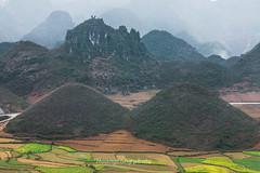 K2916.0211.Quản Bạ.Hà Giang (hoanglongphoto) Tags: asia asian vietnam northvietnam northeastvietnam outdoor landscape nature mountain sierra dale flank mountainlandscape mountainouslandscape vietnammountainlandscape vietnamnature canon canoneos1dsmarkiii châuá đôngnamá đôngbắc hàgiang quảnbạ ngoàitrời phongcảnh thiênnhiên núi phongcảnhvùngcao phongcảnhviệtnam thiênnhiênviệtnam phongcảnhhàgiang núiđôiquảnbạ dãynúi sườnnúi thunglũng canonef70200mmf28lisiiusmlens