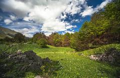 STZ_5680 (szugic) Tags: mountain nature montenegro crnagora moraca