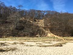 Trail up to the bluffs above Long Island Sound in Sunken Meadow State Park (Matt McGrath Photography) Tags: newyork beach unitedstates longisland northshore kingspark bluff longislandsound sunkenmeadowstatepark