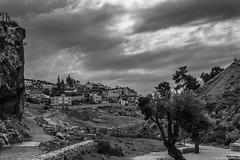 Gerusalemme 2015 - scorcio della valle del Cedro (Fabrizio Pisoni) Tags: del valle places israele gerusalemme luoghi 2015 terrasanta cedro