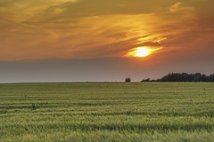 Sunset gradient (JodBart) Tags: sunset fields sky orange green clouds nature lanndscape billinge winstanley