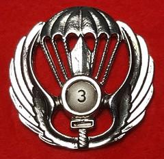 3rd Parachute Battalion (Poggio Rusco) (Sin_15) Tags: italy italian military badge insignia beret parachute battalion