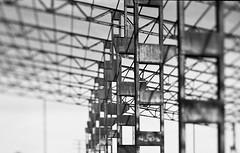 Efecto Scheimpluug (fcuencadiaz) Tags: linhof analogica byw fotografiaargentica