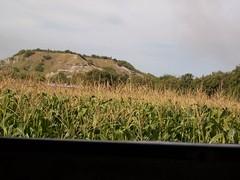 maz (johnmoralesh) Tags: panorama paisajes naturaleza landscape colombia cultivos tolima maz
