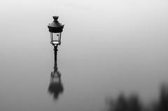 inondation  Paris - Flood in Paris (tivitto) Tags: white black paris france water lamp seine canon pose blackwhite noir ledefrance flood lumire et fr blanc inondation lampadaire fleuve sigma1020mm longue nd10 7dmarkii 7dmrk2
