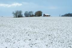 Feldscheune - Barn (Der Gnurz) Tags: schnee winter snow field barn landscape feld stall landschaft scheune feldscheune
