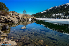 caples lake, CA (hakoar) Tags: life california travel blue sky mountain lake tree ice beach nature water rock stone forest landscape us colorful pattern unitedstatesofamerica rocky trunk vista wilderness caples