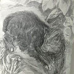 """#kitty in the #garden A Sketch A Day 6/7/13 • <a style=""""font-size:0.8em;"""" href=""""https://www.flickr.com/photos/61640076@N04/8980867872/"""" target=""""_blank"""">View on Flickr</a>"""