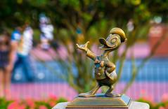 Magic Kingdom: Donald Duck (Hamilton!) Tags: world lake rabbit hub zeiss prime bay duck bokeh brother sony magic hamilton kingdom disney donald resort telephoto vista walt za buena a99 sonnart18135 pytluk