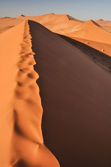 Namib Naukluft Park, Namibia. (Marie-Laure Even) Tags: voyage africa park trip travel family famille autumn fall june landscape juin desert african dunes au dune roadtrip southern automn paysage sesriem namibia commonwealth africain afrique désert namibian namib southernafrica namibie afric naukluft sadc namibnaukluftpark sossuslvei australe 2013 namibië désertique afriqueaustrale namibienne commonwealthofnations namibien republicofnamibia marielaureeven républiquedenamibie