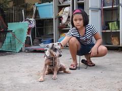 P8040326 (Animals Taiwan) Tags: heidi