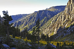 Sonora Pass (San Francisco Gal) Tags: california mountain tree nature landscape sierra granite aspen conifer sierranevadarange highway108