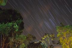 Jureia_071@20130909.jpg (Br@hl) Tags: praia beach nature brasil canon stars outdoors estrelas 7d trial 1022 litoralnorte 2013 jureia brhl canon7d trailingstars brunoahlgrimm