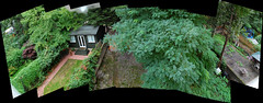Crazy paving (beqi) Tags: trees panorama london garden hotel photoshoppery 2013 russellcourt