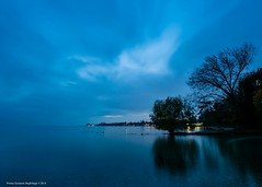 Le lac  [explored] (DeGust) Tags: blue autumn sky lake reflection tree water colors night automne landscape schweiz switzerland see nikon eau wasser europa europe suisse cloudy couleurs lac lausanne bleu reflet ciel bluehour blau vidy svizzera paysage landschaft reflexion nuit arbre nocturne saisons farben lakegeneva vaud lacléman nuageux romandie genfersee waadt losanna heurebleue nächtlich d700 d3s 1424mmf28 nikkorafs1424mmf28ged gustavedeghilage