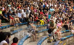 WaterWorld (Kokkai Ng) Tags: park travel ski tourism wet water bench singapore asia southeastasia audience amphitheatre jet theme universal splash studios sentosa performer uss splashing waterworld lostworld