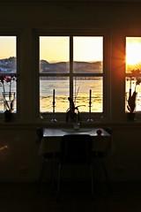 7:31 (stjernesol) Tags: morning windows kitchen sunshine december glow seehowclosetotheseasideilive theviewfrommykitchenthismorning freezingcoldafteradaywithheavysnowfall thesunwasoutandmadeeverythinggolden magicalwheniwakeuptothis mywindowsareconstantycoweredinsaltfromthesea nopointinwashingthemp myorchidshaveawonderfulplacetoviewtheworld
