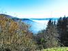au dessus de MUNSTER  07  les VOSGES,  Beaute et Paysages de notre belle France, Guy Peinturier (GUY PEINTURIER) Tags: vairessurmarne beautedefrance guypeinturier bellefrance paysagesdefrance peinturierguy