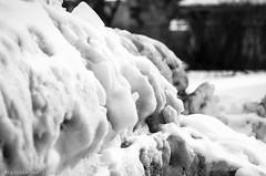 The Dark Underbelly Of Winter - IV (RGL_Photography) Tags: winter snow newjersey unitedstates jerseyshore globalwarming longbranch globalwarning