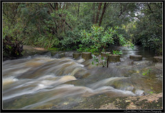 Stepping Stones (Emma White ( ... somewhere ... )) Tags: park longexposure white fall water newcastle landscape flow waterfall nikon flooding rocks long exposure photographer path stones emma brisbane national stepping rush nsw waters blocks np centralcoast brisbanewaternationalpark girrakool d7100 thewhiteview
