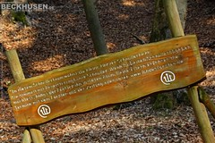Too Cute 2015f (Stefan Beckhusen) Tags: mountains tree history fairytale forest germany hiking witch dummy harz pacifier badharzburg schnullerbaum rabenklippe vision:outdoor=0576 vision:sky=065