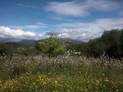My Paradise... (Nora Nera) Tags: sardegna panorama nature countryside italia sardinia natura campagna raica