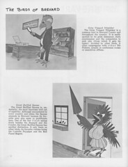 """Pioneers_Yearbook_1967_Page_28 <a style=""""margin-left:10px; font-size:0.8em;"""" href=""""http://www.flickr.com/photos/130192077@N04/16192851380/"""" target=""""_blank"""">@flickr</a>"""
