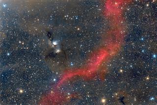 M78 and Barnard's Loop