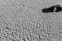 Baha de La Concha or Baha de La Siesta ? (ABO Photographie) Tags: love monochrome couple noiretblanc sable bahia concha sansebastian plage donostia nouvelan amoureux sommeil baie sieste exterieur
