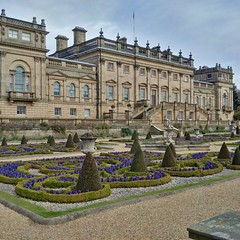 Harewood House, near Leeds (gowersaint) Tags: england house history home public gardens architecture facade purple britain terrace yorkshire leeds formal historic georgian stately parterre harewood
