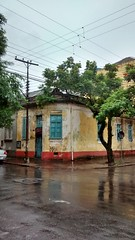 Esquina (Gijlmar) Tags: brazil tree window southamerica rain brasil arbol ventana lluvia fenster chuva portoalegre brasilien finestra janela rvore fentre riograndedosul brasile brsil okno amricadosul venster brazili amriquedusud  amricadelsur ablak