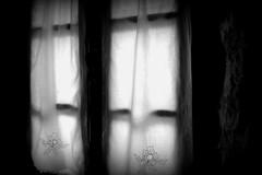 The Window (Ken-Zan) Tags: window gardiner fnster mnster