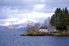 lochlomond-7 (nora on the move) Tags: lake nature scotland lochlomond