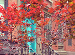 autumn in new york (poludziber1) Tags: street door city nyc travel red urban ny newyork colorful cityscape