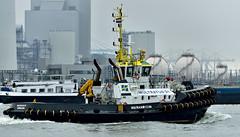 MULTRATUG 31 (dv-hans) Tags: portofrotterdam nieuwewaterweg tug harbour seagoingtug harbourtug maassluis maasvlakteii maasvlaktei europoort botlek nieuwemaas