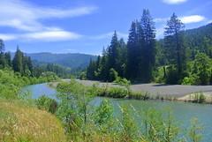 Eel River (ivlys) Tags: usa california avenueofthegiants eelriver fluss river landschaft landscape nature ivlys