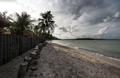Brazil - Tamandar (Nailton Barbosa) Tags: nikon d80 nordeste ne praia do carneiros pernambuco pe litoral mar oceano praias areia brasil brazil brasile brsil bresil brasilien