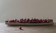 June (alinalcraita) Tags: cherries june summer red plateau stillife stilllife fruit sweet gray background nature light