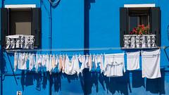 Laundry on Venice (Raymond Kuilboer) Tags: venetie venezia venice blue white laundry flower red balcony wall