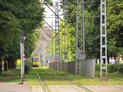 Tram line in Szczecin (transport131) Tags: infrastruktura infrastructure tram line tramwaj linia szczecin tsz zditm